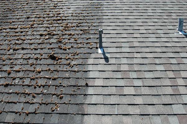 Roof Washing Eco Wash Halifax
